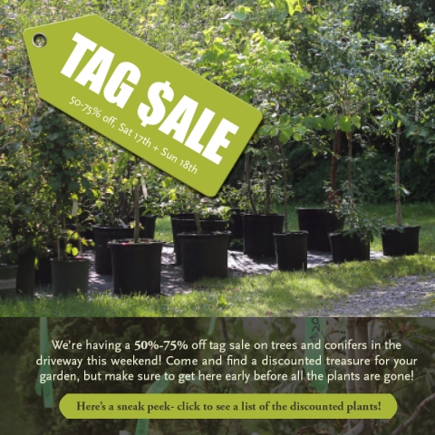 Rocky Dale Tag Sale! This Weekend! 50%-75% off